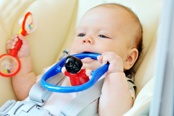 Babies learn from their senses
