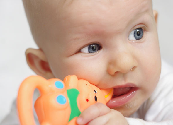 why babies mouth toys